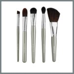 Colorescience Brush set